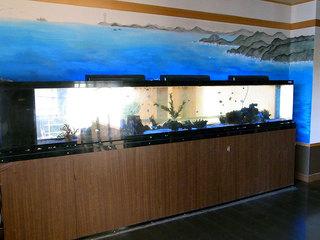 店内の水槽には熱帯魚が泳いでます。