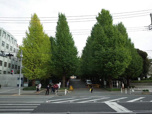 慶應大学日吉キャンパスの外観